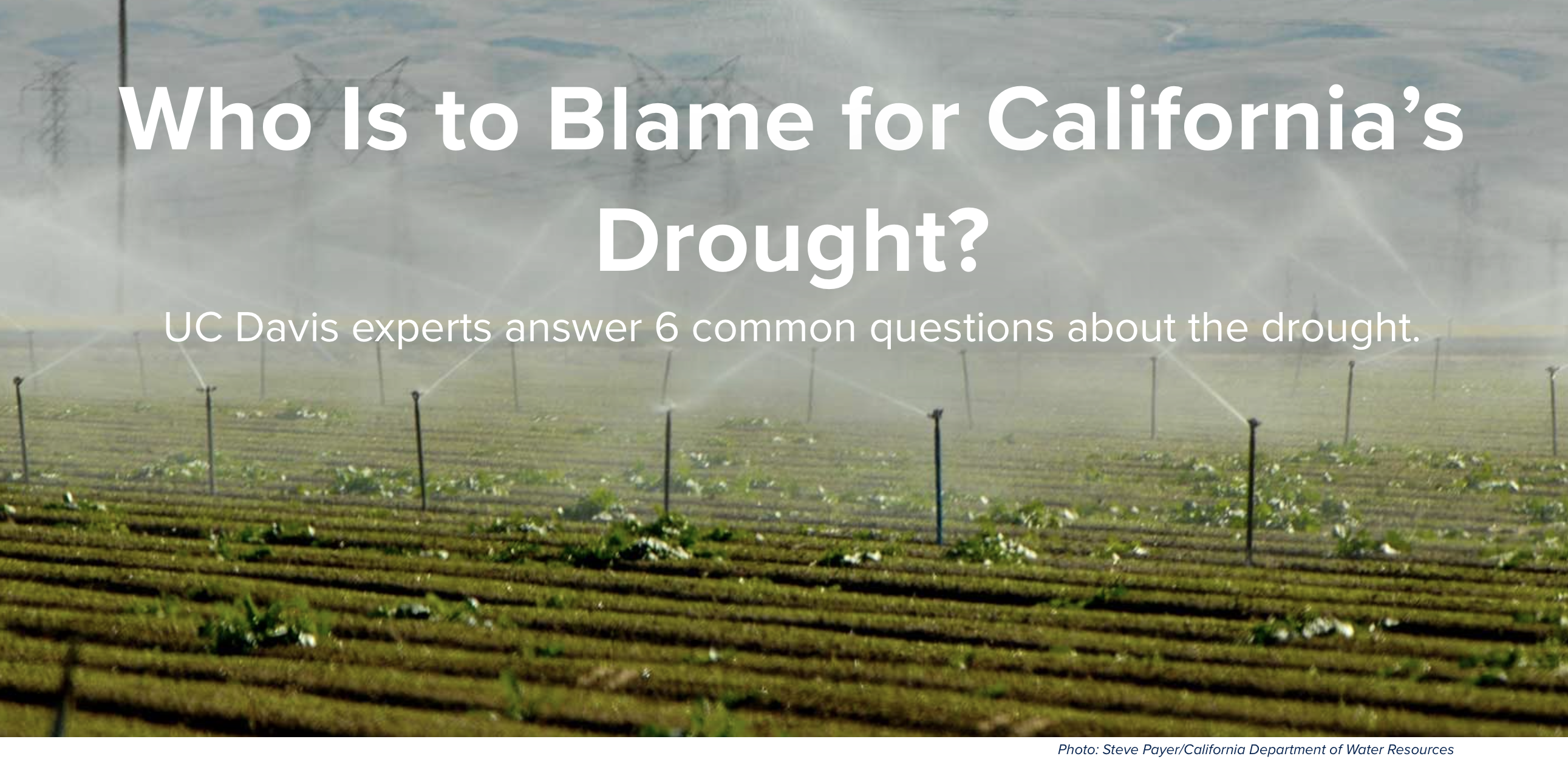 UC Davis Magazine banner image for article,Photo: Steve Payer/California Department of Water Resources
