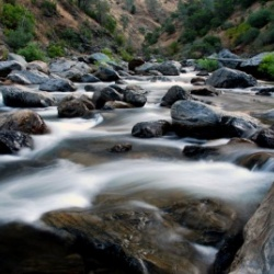 The Tuolumne River: Ecogeomorphology's spring 2016 outdoor laboratory
